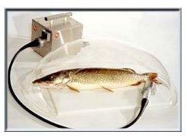 Колпак для рыбочистки KT - S