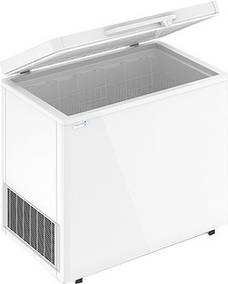 Ларь морозильный Frostor  F 300 S