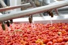 Комплект оборудования для производства томатной пасты c производительностью от 100кг. до 10 000кг. в час